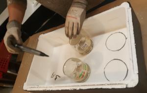 DIY : comment fabriquer son lombricomposteur ?